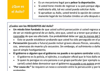 Asylum Summary Spanish